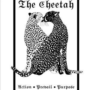 Cheetah Tarot Card Home Decor